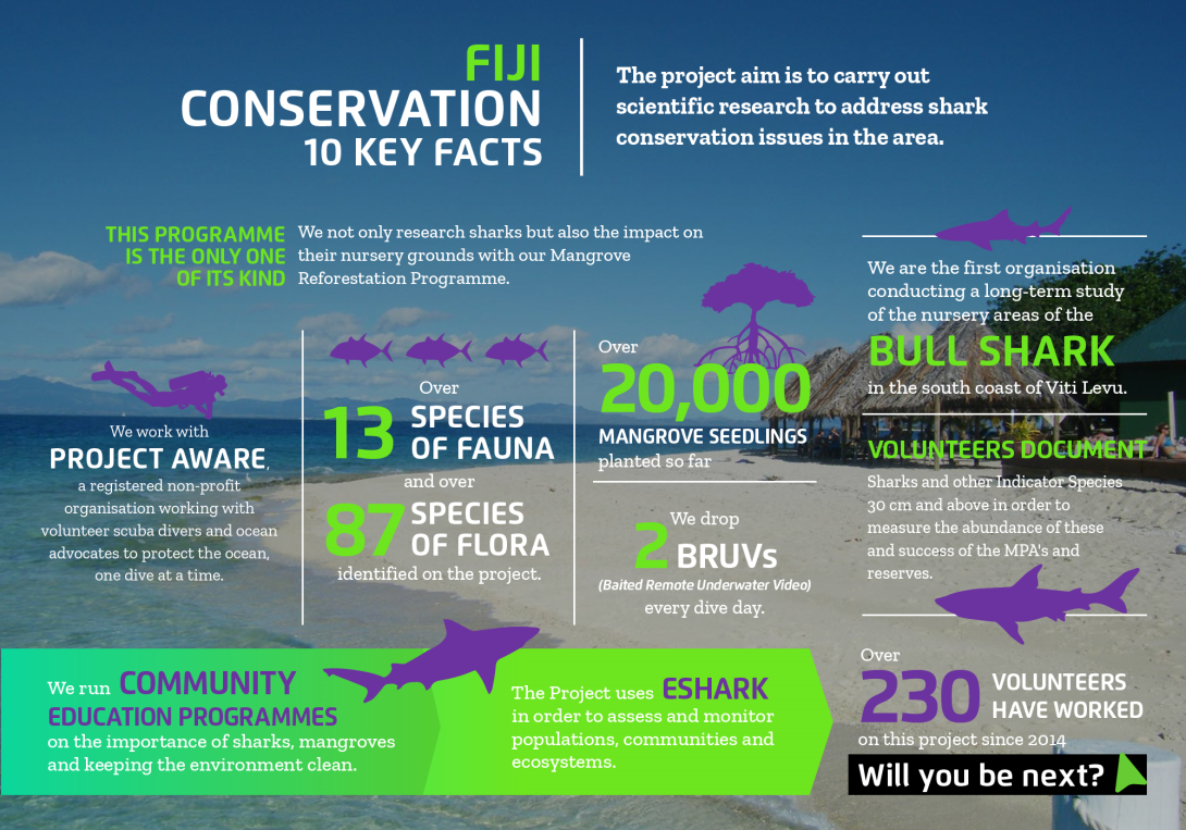 Interesting facts about conservation volunteering in Fiji with projects abroad